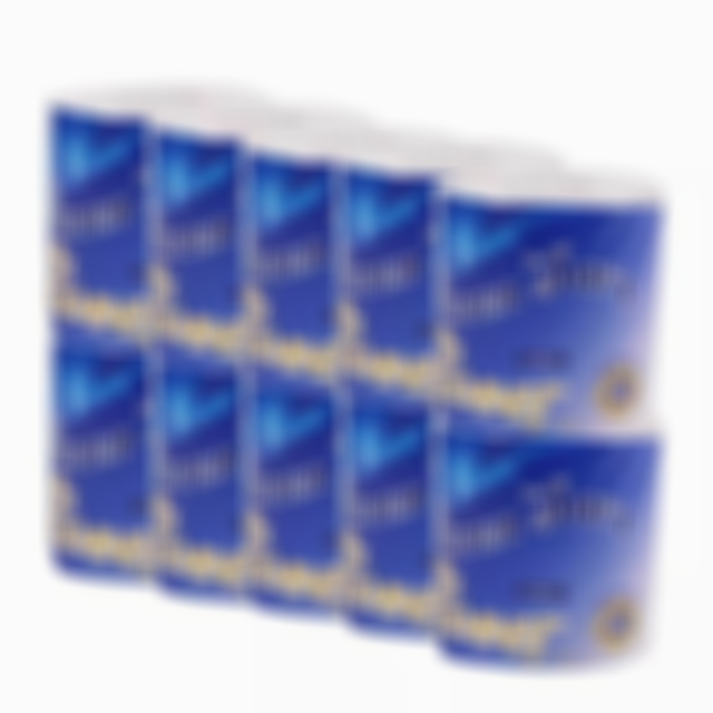 Arosetop 10 Rolls Ultra-Soft Toilet Paper | Arrives Within Five Days in the United States