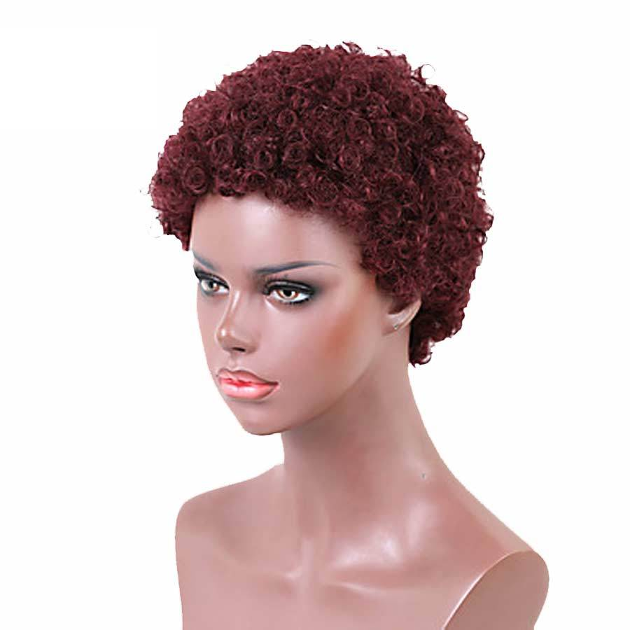 Luna Wig 018 Women Classic Short Curly Afro Hair for African American