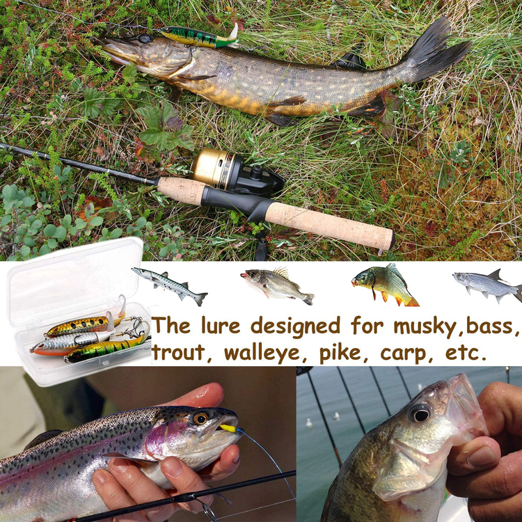 MADE IN U.S.A-Topwater Fishing Lure