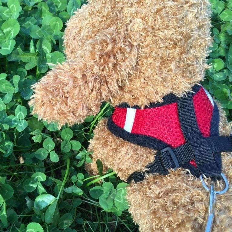 Ling Chong Pet Dog Leads Chest Straps Small Pet Adjustable