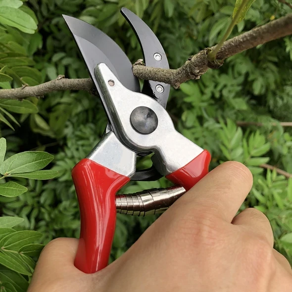 Limited 50% Off This Summer--Branch Scissor & Pruning Shears (Buy 2 Free Shipping)