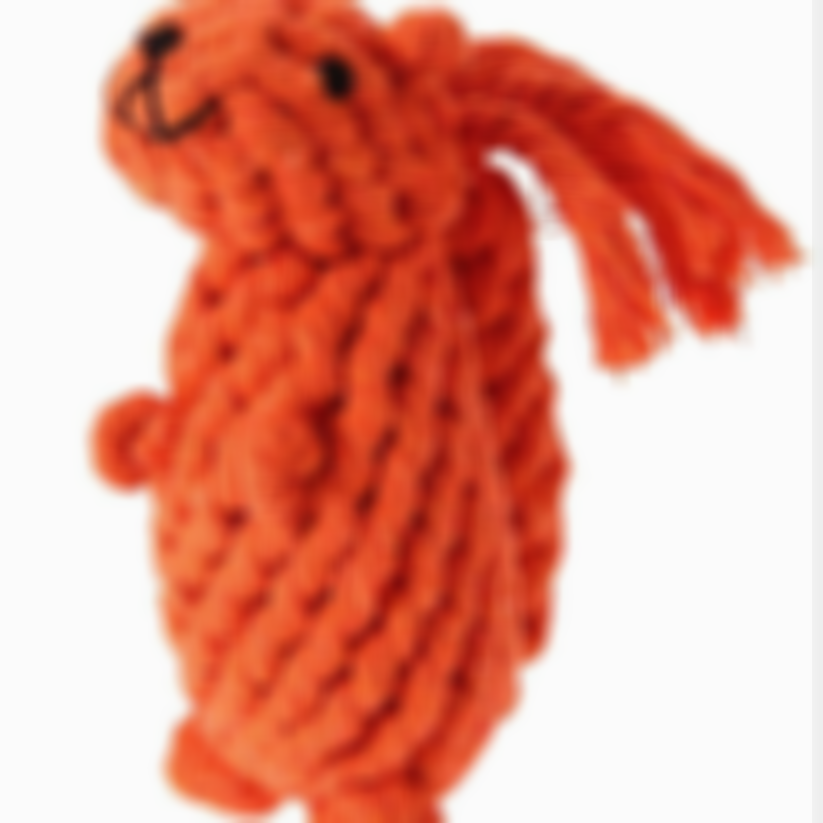 LooknTook Cotton Rope Animal Squirrel Shape Chew Toy For Pet Cotton Chew Toy For Dog