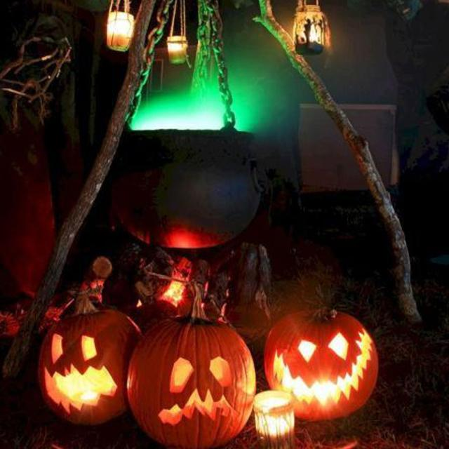 🎃BUY 1 GET 1 FREE TODAY🎃Talking Animated LED Pumpkin