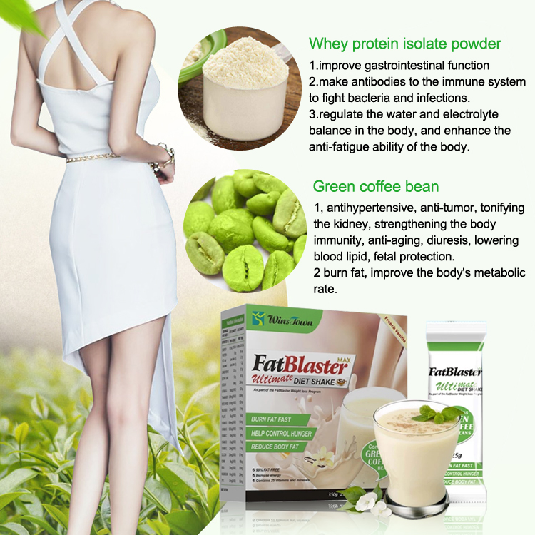 Fat Blaster Diet Shake【50%OFF Limited Time Offer】