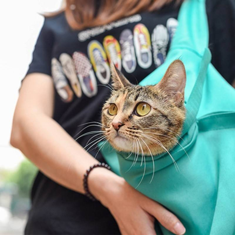 Buy One And Get One FREE Only Today!!--Cat Travel Pouch (Breathable fabric)