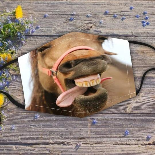 🐴Horse Face Mask🐴 (Includes six different models)- on sale