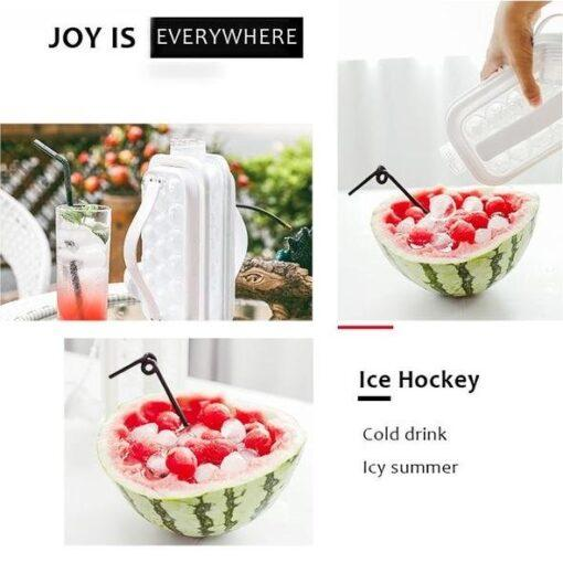 2-in-1 Keep Cold Portable Ice Container