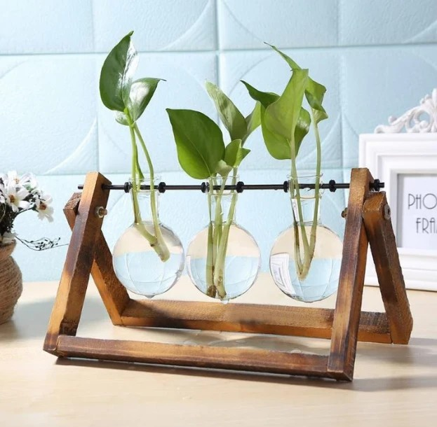 Hydroponic Plant Wooden Frame Home Decor