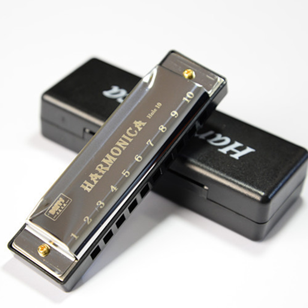 Professional Harmonica in C Key with Case