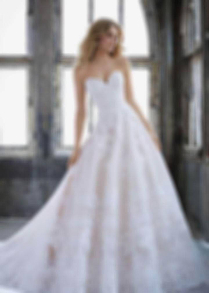 2020 New Wedding Dress Fashion Dress prom gowns the wedding store at liz clinton