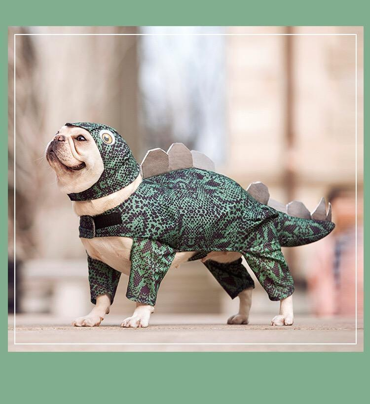 Dinosaur pet clothes