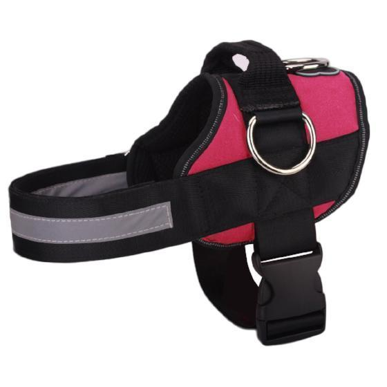 【70% OFF PROMOTION ONLY TODAY】World's Best Dog Harness - 2020 Version