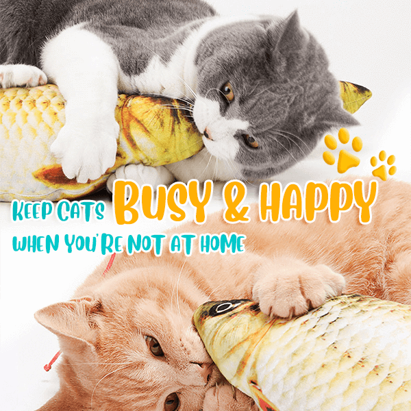 Funny Catnip Fish Toys-Best Gift For Cats
