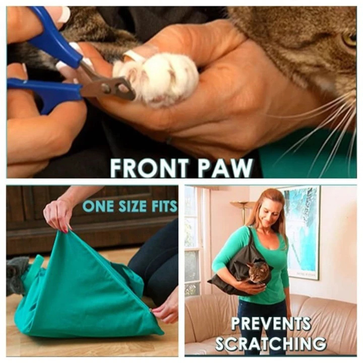 Buy One Get One FREE: Cat Carrier Pouch