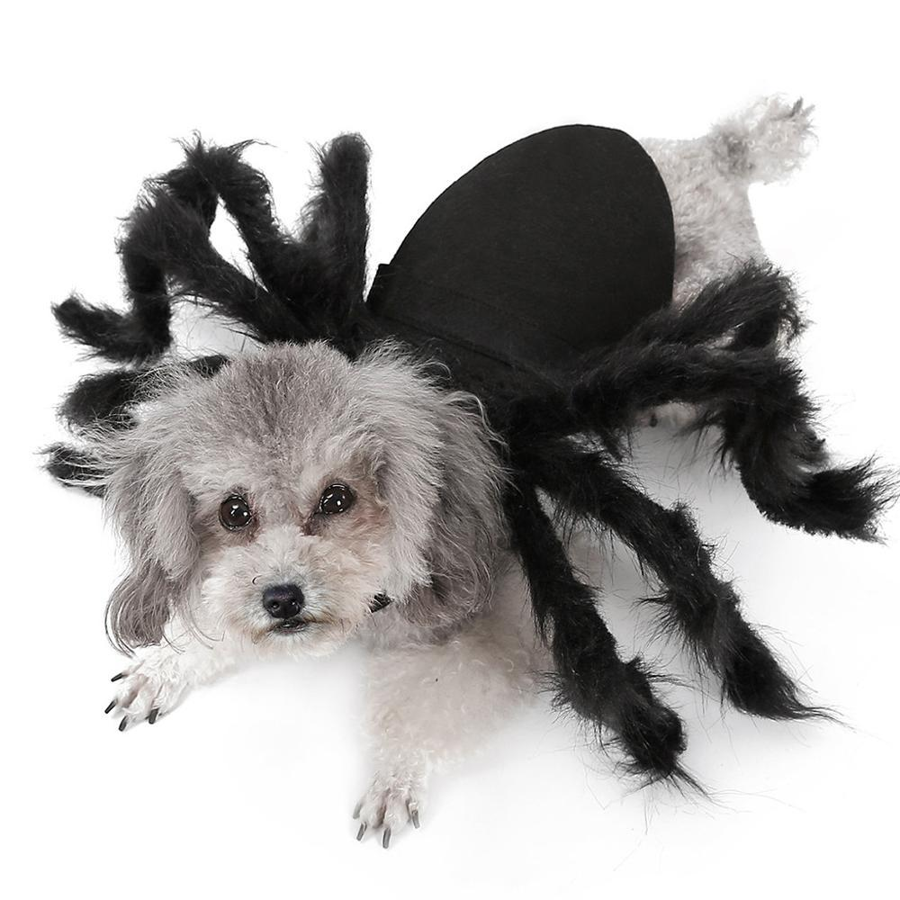 Halloween Spider Costume for Dogs Cats