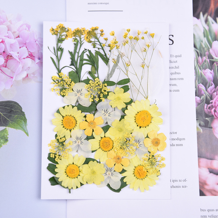 DIY Pressed Flowers