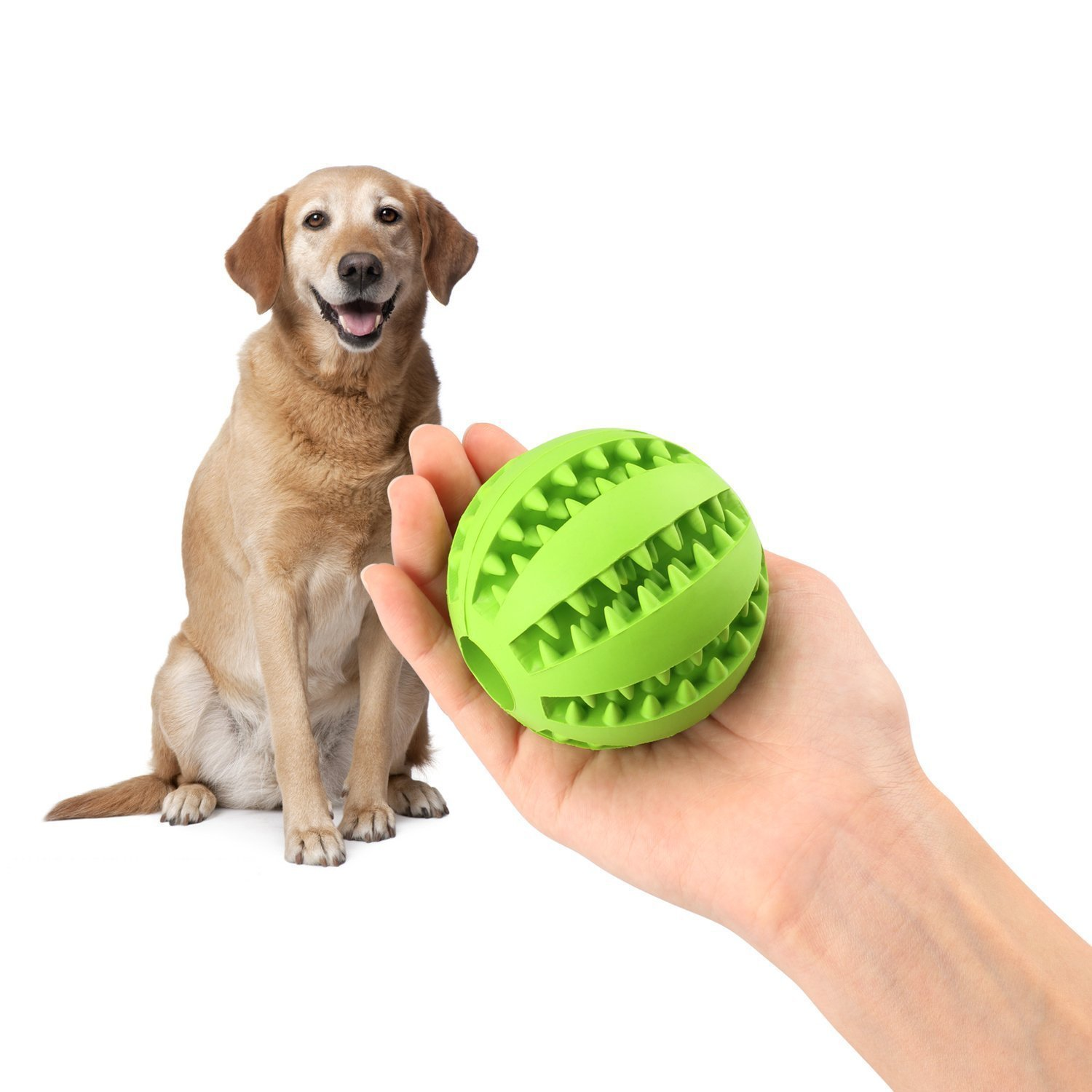 Feeder Chew Tooth Cleaning Ball