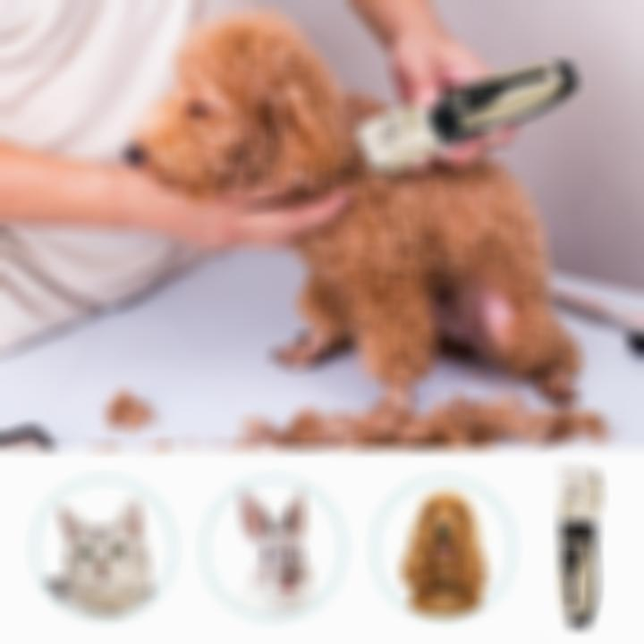 【ONLY $29.9!!!】 Pet Hair Trimmer