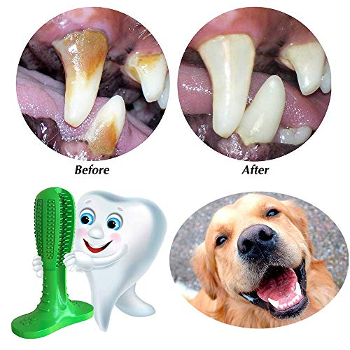 【BUY 2 GET 1 FREE】Teeth Cleaning Dog Chew Toy Brush
