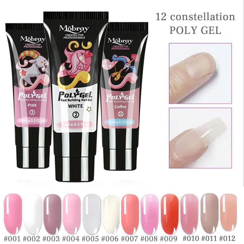 12 in 1 Poly Gel Nail Extension Set 12 Colors Nail Gel 100Pcs Nail Molds