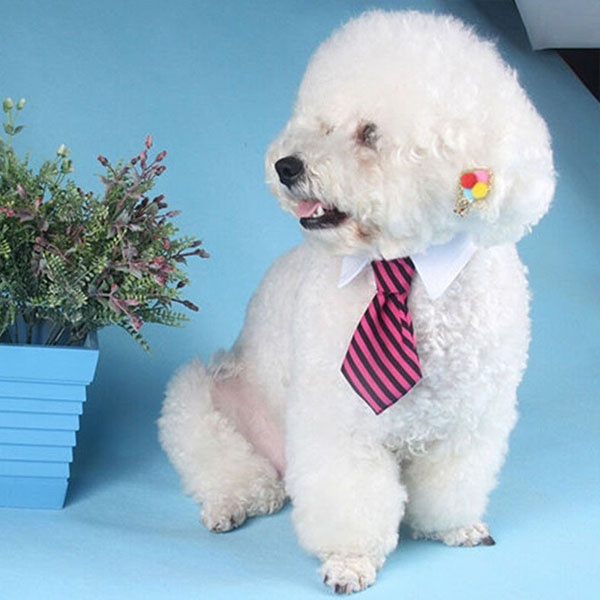 Pet Dog Cat Puppy Twill Cotton Striped Adjustable Bows Ties Neckties with White Collar for Small Medium Dogs Cats