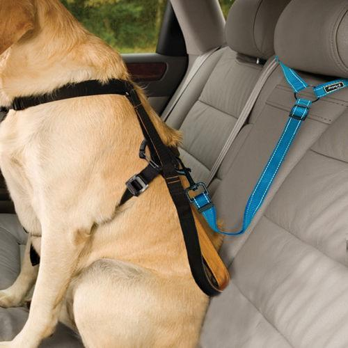 🔥30 % OFF🔥2021 Must-Have Dog Car Seat Belt