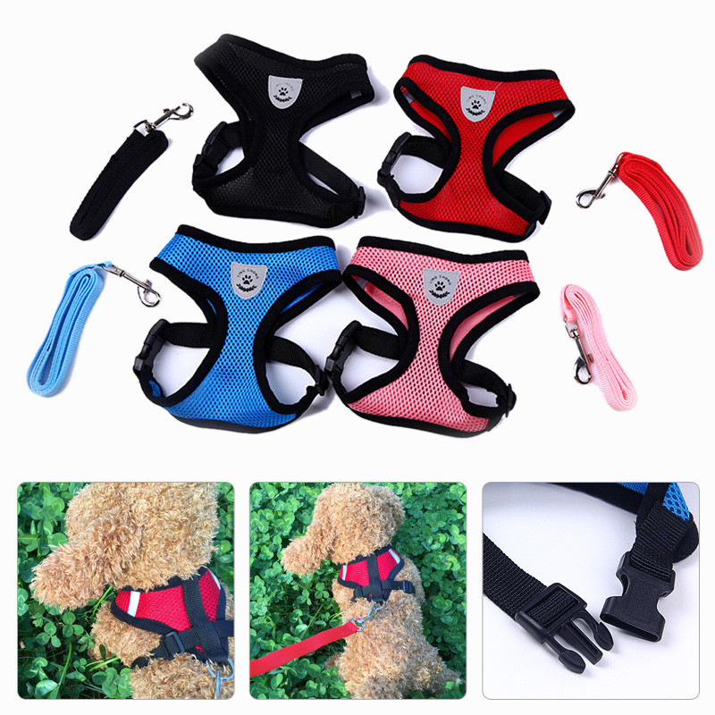 🔥Happy Easter🔥Cat Harness And Leash For Adventure