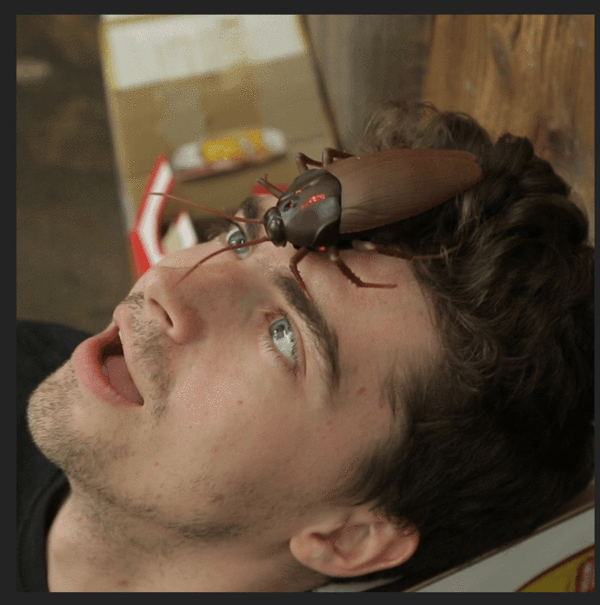 Infrared Remote Control Creepy Cockroach Prank Toy