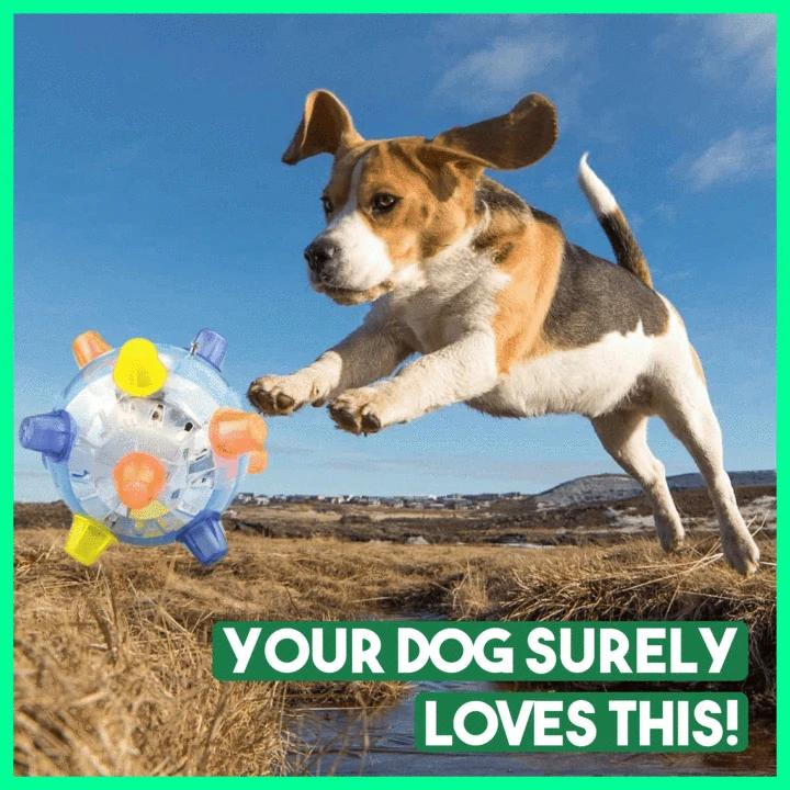 🔥(BUY 1 GET 1 FREE -Please add 2 to the shopping cart)🔥(Discount code:B5) 🔥JUMPING ACTIVATION BALL FOR DOGS