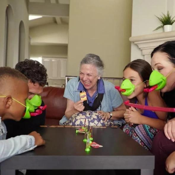 CHALLENGER® The fashionable game for families and friends