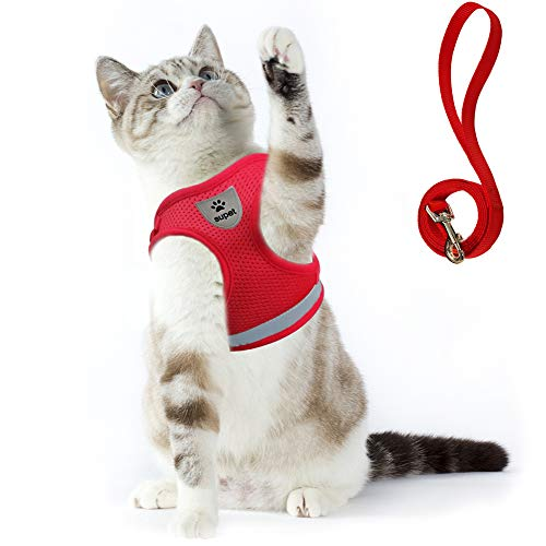 🔥HOT SALE🔥Cat Harness and Leash for Adventure