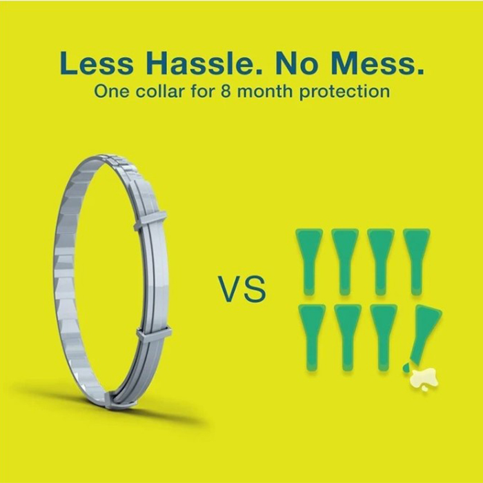 Flea and Tick Collar for Dogs & Cats