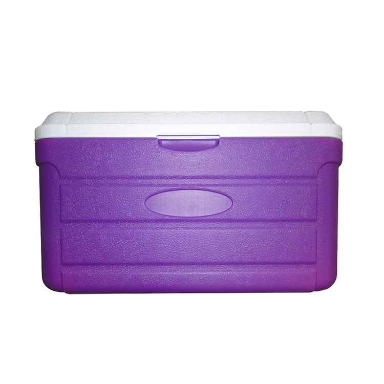 Portable cooler box with handle, plastic ice cooling box, medical /blood transportation