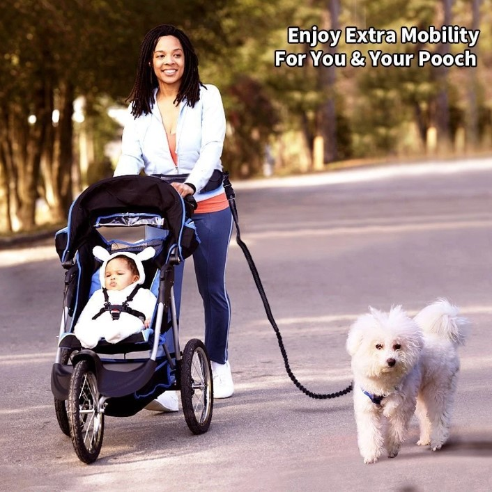 (SUMMER SALE- Save 50% OFF)Handsfree Bungee Dog Leash- Buy 2 Get Free Shipping