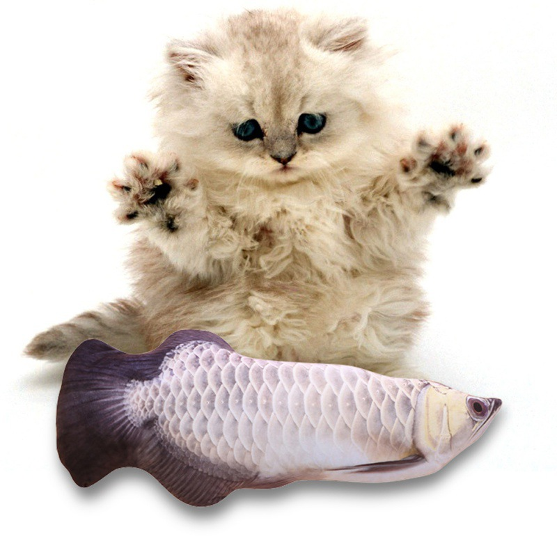 Cat Cuddly 3D Fish Toy, Pet Cat Simulation Fish Toys