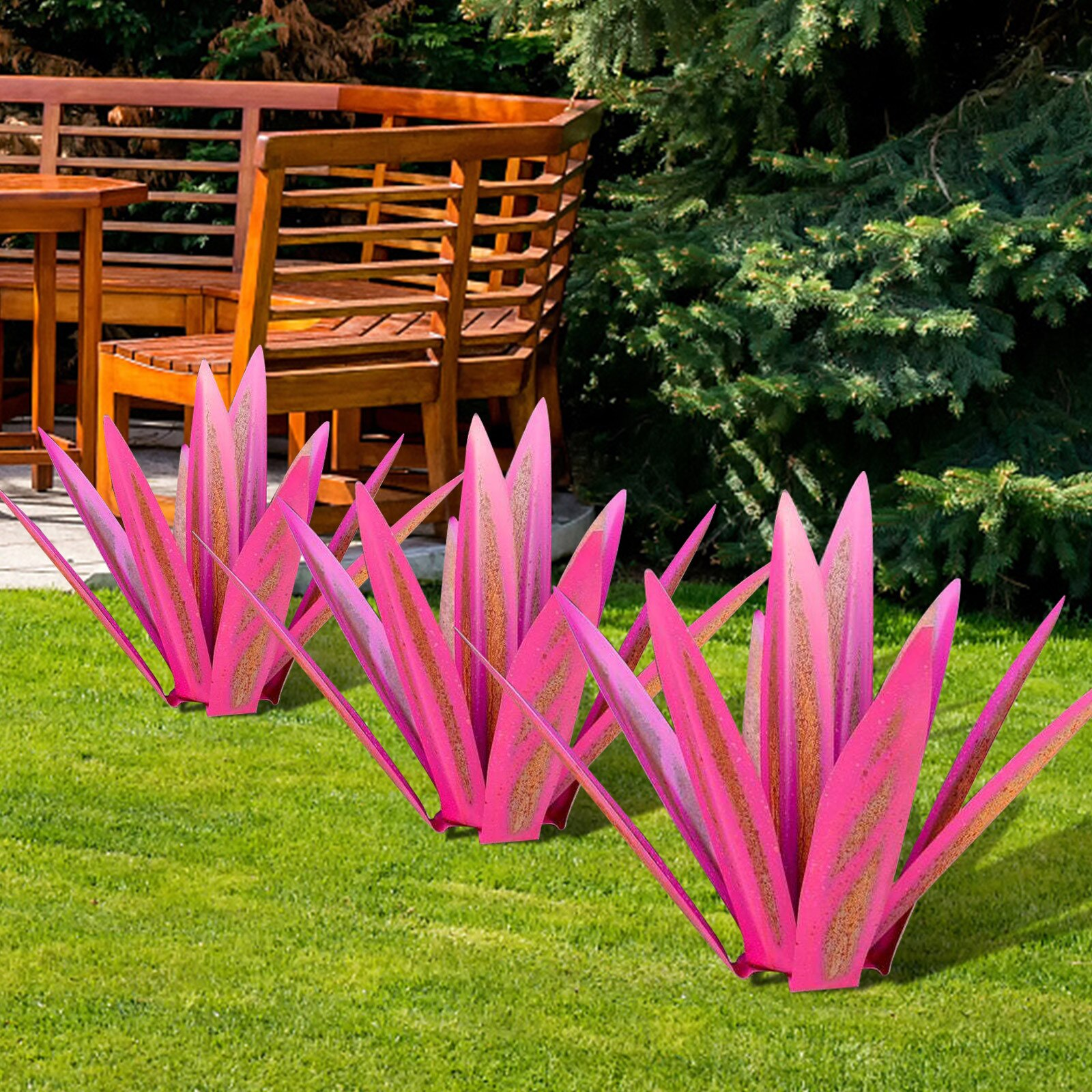 🔥Hot Sales Red Tequila Agave-Perfect for Garden🔥