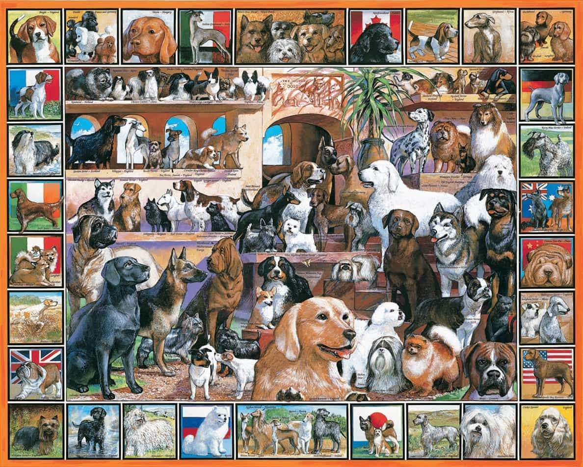 DOG 500/ 1000 Piece Puzzle(Buy 2 Free shipping)