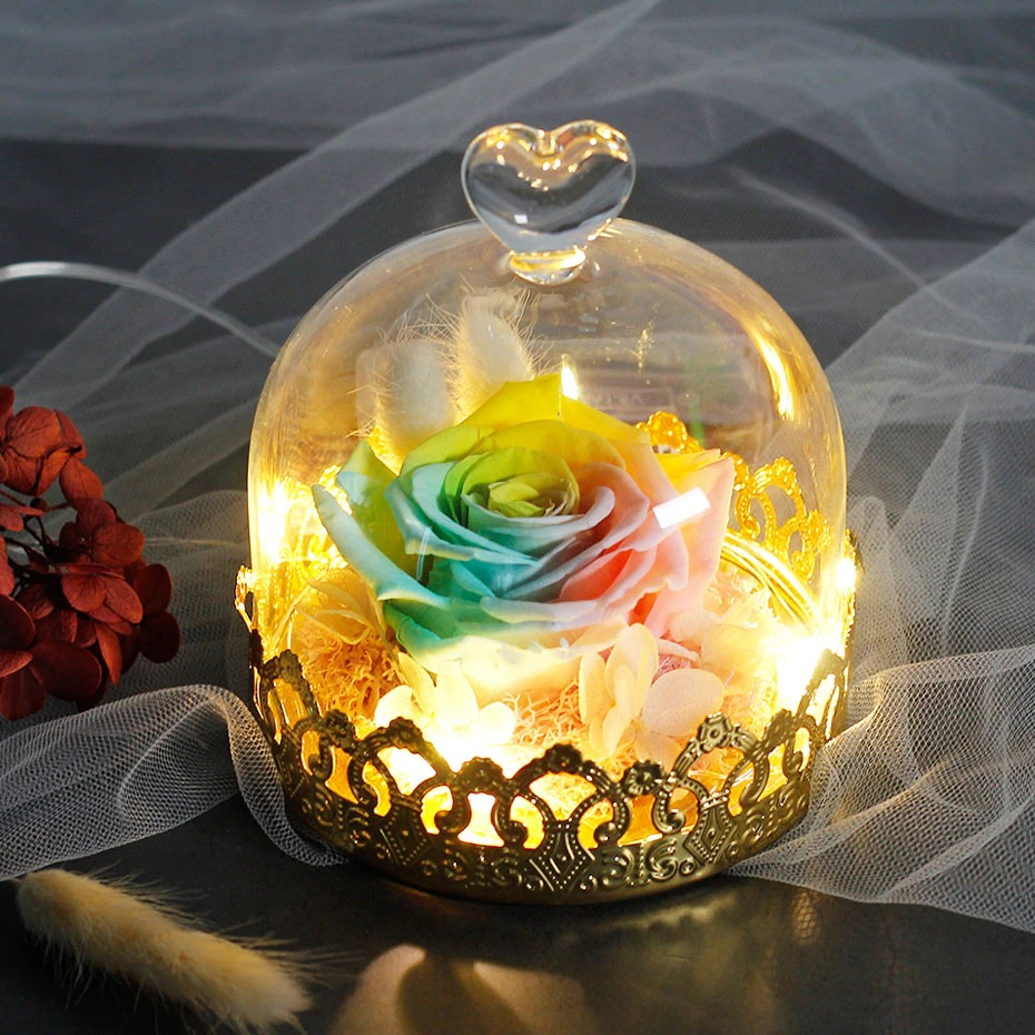 Preserved  Eternal Real Rose With Lights  Mother's Day Gift