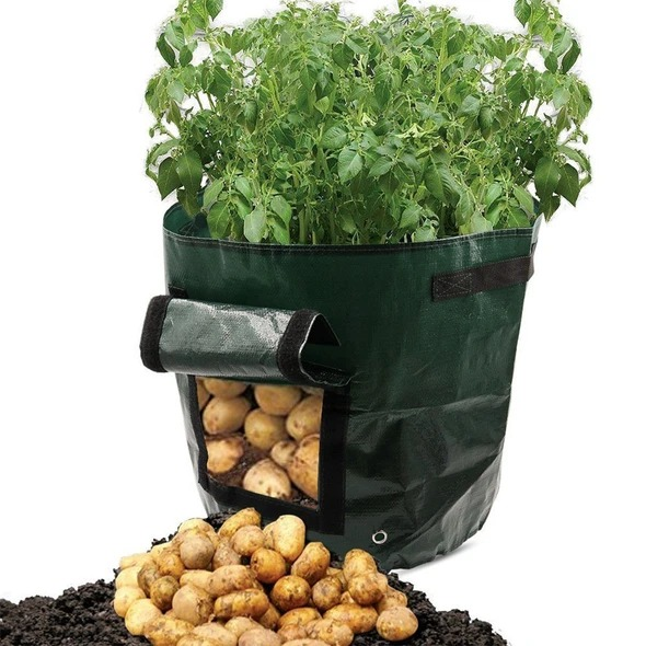 (SUMME SALE)50L Large Capacity Potato Grow Planter PE Container Bag- Buy 4 Free shippng