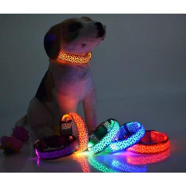 LED light emitting collar pet leopard, spotted dog collar fluorescent lines