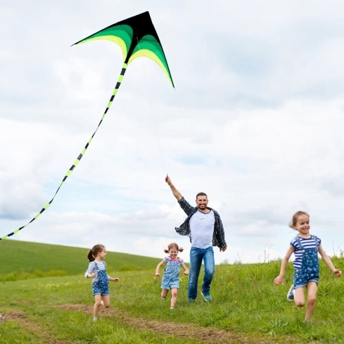 Colorful Delta Kite Outdoor Sport Single Line Flying Kite with 30m Flying Line for Kids Adults